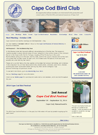 Cape Cod Bird Club